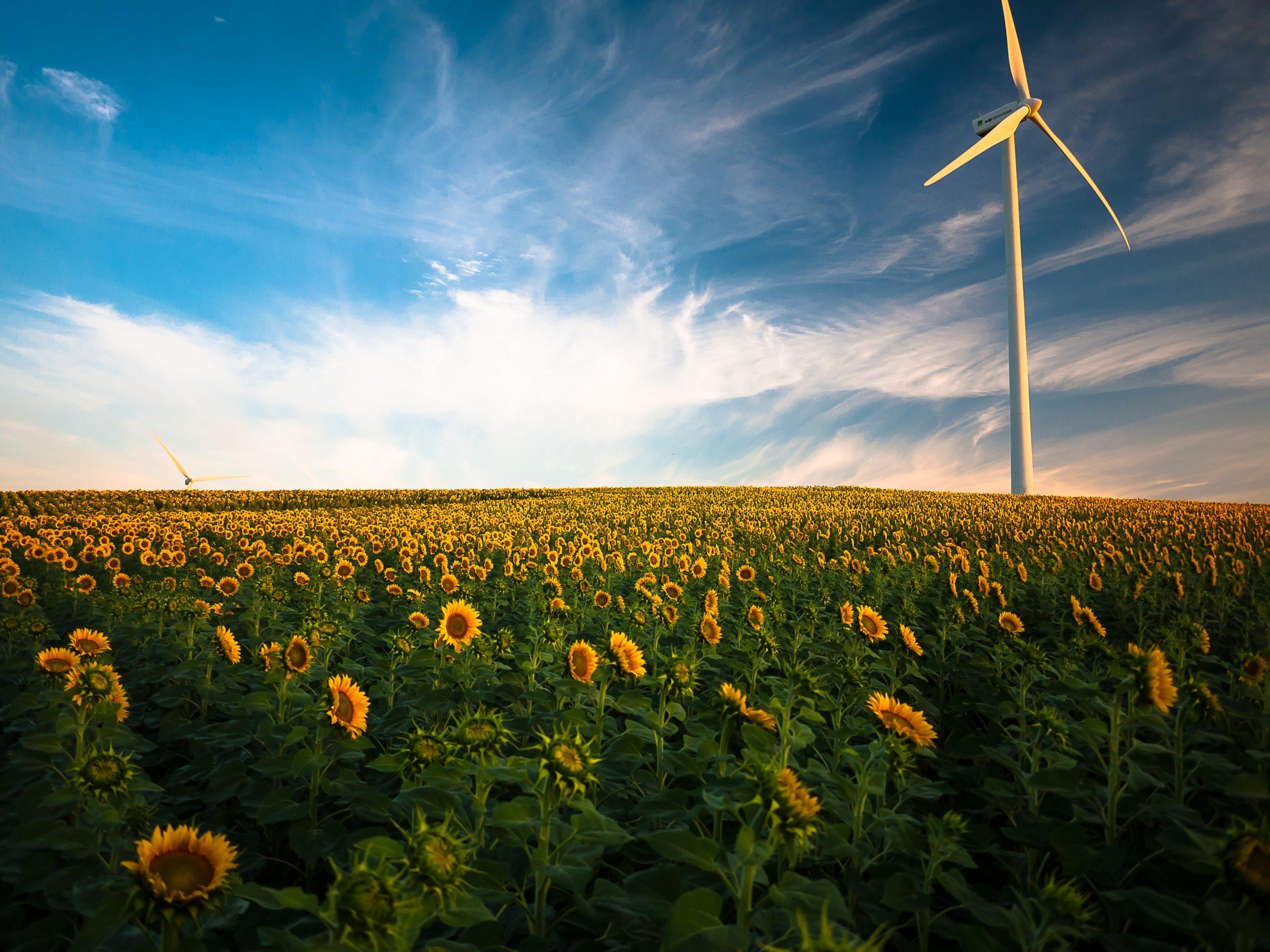 Energia senza petrolio: è possibile